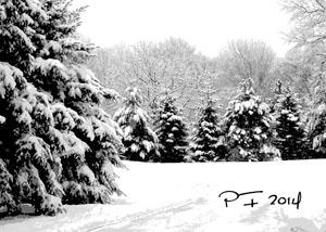 Vianočný pozdrav 129VP