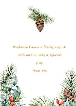 Vianočný pozdrav 47VP