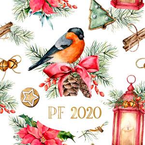Vianočný pozdrav 7AVP